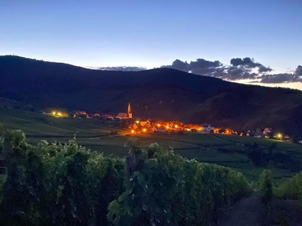 Découverte avec un drone du Domaine de l'Oriel situé dans un environnement naturel exceptionnel sur les hauteurs de 68230 Niedermorschwihr (Alsace)