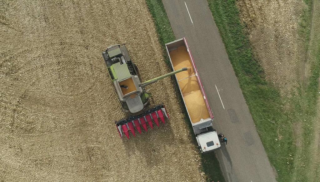 28/10/2020 : Prises de vues par drone en compagnie de Sébastien Reymann pour un de ses chantiers de moissons de maïs sur les terres de la Ferme Reymann située à 68 Raedersheim ( Haut-Rhin, Alsace)