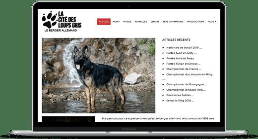 La Cité Du Loups Gris © Création site Web Cataclaude