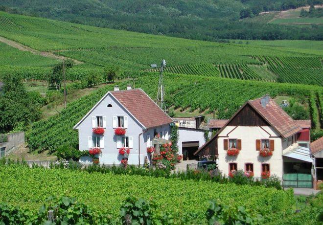 La Famille KRESS-BLEGER établie à 68 Rodern (Haut-Rhin – Alsace) est heureuse de vous annoncer la création d'un site Internet pour votre confort