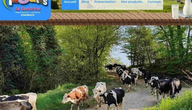 Nouvelle réalisation de site Internet vitrine entre Mulhouse et Colmar pour les Yaourts de Sandrine Earl Mootsch Gollentz à 68 Osenbach près de Guebwiller